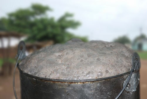 GOLD-Umqombothi-African-Beer