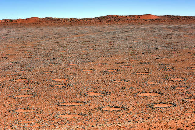 GOLD-Namib-Fairy-Rings